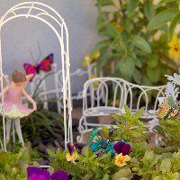Starter Kits - My Little Fairy Garden - Miniature Fairy Gardens Australia   Fairies, Furniture, Accessories, Houses and More