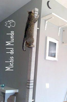 MICHIS DEL MUNDO: Palo Trepador - Rascador para Gatos