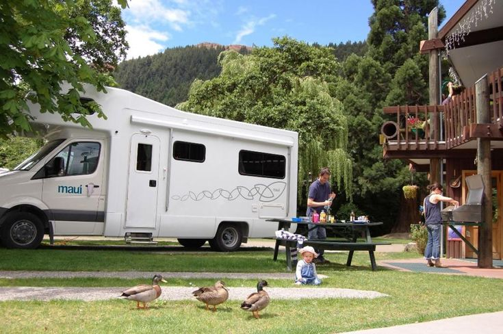 Our regular guests - the Mallards, attempting to join a family for lunch