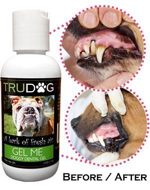 Nice Dental Care For Dogs Gel Me Effectively Reduces Plaque Tartar Build Up Bad Dog Breath Without Money Back Guarantee