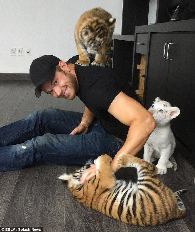 Animal lover: In addition to Black Jaguar White Tiger, Kellan has supported a wide variety...