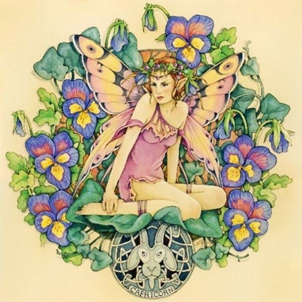 Capricorn fairy