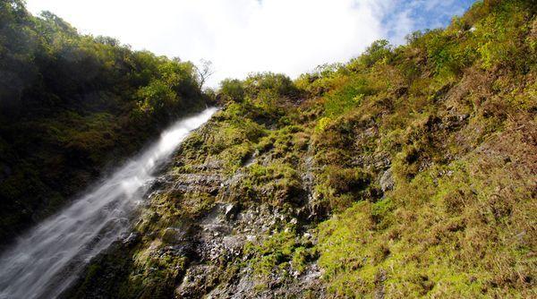 Hawaii: Waimoku Falls    Photograph by Brandon Morris