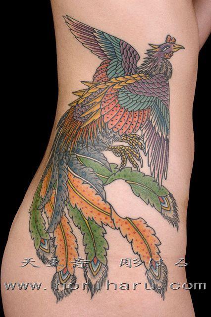 腰,腹,女性,お尻,脇腹,お腹,鳳凰,鳳凰羽,カラーのタトゥーデザイン|タトゥーナビ