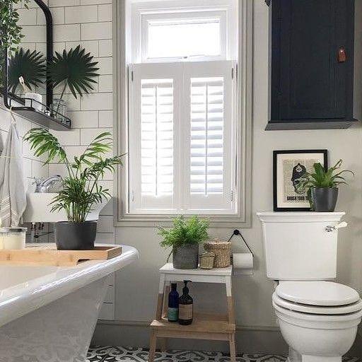 Kalian Juga Bisa Loh Mempercantik Nuansa Kamar Mandi Dengan Menambahkan Aksesoris Berupa Tanaman Hias Tempat Bathroom Interior Bathroom Design Classy Bathroom Small bathroom bathroom designs sri