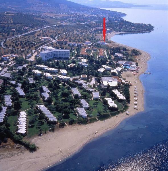 Wunderschöne Maisonette 80 Meter entfernt vom Strand  Details zum #Immobilienangebot unter https://www.immobilienanzeigen24.com/griechenland/63100-gerakini-chalkidiki/Reiheneckhaus-kaufen/23790:1824777137:0:mr2.html  #Immobilien #Immobilienportal #Gerakini-Chalkidiki #Haus #Reiheneckhaus #Griechenland