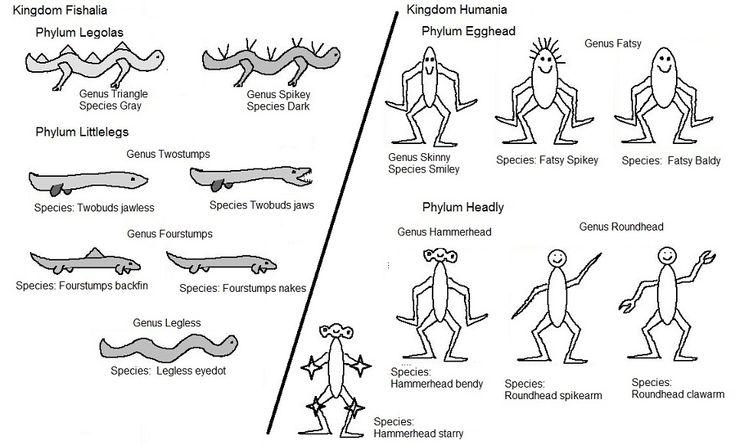allien taxonomy my biology pinterest worksheets. Black Bedroom Furniture Sets. Home Design Ideas