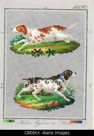 Berlin wool work pattern  of dog from Hertz & Wegener, Berlin
