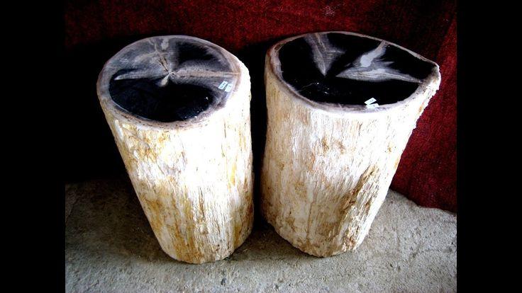 Petrified Wood Gallery Furniture