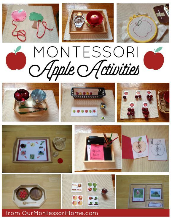 Montessori Apple Themed Activities - Johnny Appleseed Theme Unit & Lesson Plans