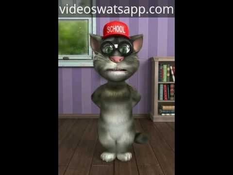 Chistes del Gato Tom http://videoswatsapp.com Comparte y reproduce los videos más divertidos para whatsapp, facebook. ¡Compartelos con tu... #videos #gatotom #gato #tom #chistes #risas