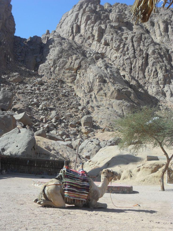 Sinai mountains - Sharm el Sheikh