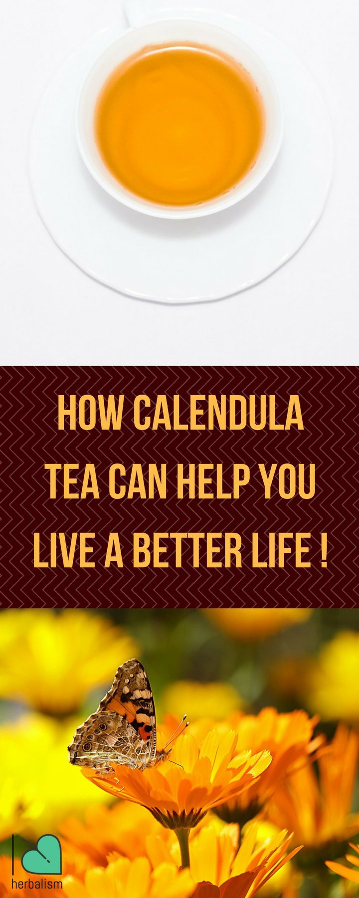 You don't want to miss these awesome benefits of calendula tea. Calendula tea provides a flower scent and taste, pleasant and smooth , and makes a delightful infusion when enhanced with a bit of honey or sugar.