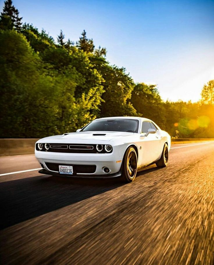Pin By CARS ONLY On Dodge Challenger