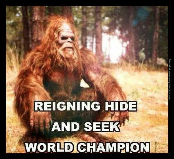 Image result for undisputed hide and seek champion of the world is...