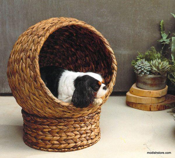 Roost Plantana Pet Bed – Modish Store