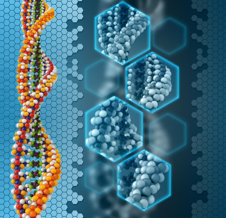 DNA stores poems, a photo and a speech  Scientists store and then retrieve 750 kilobytes of data in DNA  http://www.sciencenews.org/view/generic/id/347702/description/DNA_stores_poems_a_photo_and_a_speech