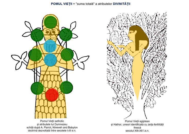 """Pomul Vieții sefirotic este un simbol cu mai multe semnificații, în care structura metafizică a universului (macrocosmos) și modelul omului perfect (microcosmos) converg spre """"chipul"""" lui Dumnezeu. În Egipt, un relief o înfăţişează pe Hathor într-un arbore ceresc (fără îndoială, al nemuririi), dând sufletului mortului băutură şi hrană - adică, asigurându-i continuitatea vieţii, supravieţuirea."""