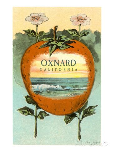 Strawberry with Ocean Scene Inside, Oxnard, California Art at AllPosters.com