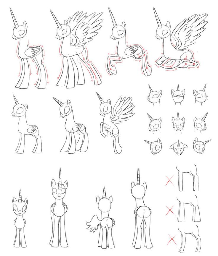how to draw mlp body