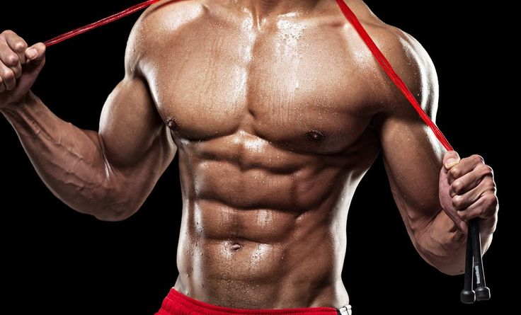 Six pack exercises are also known as Rectus Abdominus Muscle or abdominals or abs , is a pair of muscles , running on the walls of stomach , from each of the side .  First of all , we should understand that , there are seperate exercises for each upper abs , middle abs & lower abs  .  Therefore its very important to target them seperately .