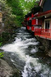 Gatlinburg, TN- Zoder's Inn One of the most popular places to stay, rooms sell out pretty regularly. The hotel is centrally located and within walking distance of most attractions.