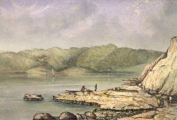 Chesney, Francis Rawdon, b 1824 :Nouveau Zealand Port de Nicolson (de Wellington) aupres de la capital [1865?]