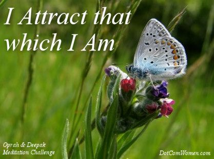 Law of Attraction – Oprah and Deepak Meditation Challenge Day 10