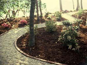 Backyard ideas - gravel pathway, brick border