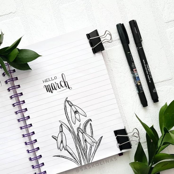 Bullet journal monthly cover page,  March cover page, Snowdrop drawings, flower drawings. | @saskolinas