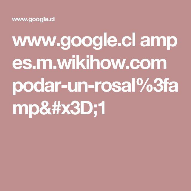 www.google.cl amp es.m.wikihow.com podar-un-rosal%3famp=1