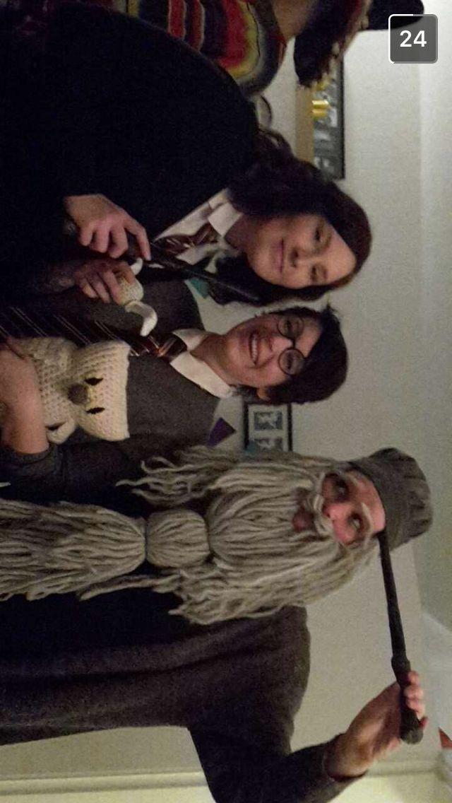 Harry Potter accessories lavet i GARN!!! Dumbledors skæg og hår (og hue), uglen Hedwig og Harrys Gyldne Lyn.