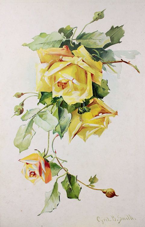 Картинки для декупажа винтажные желтые розы