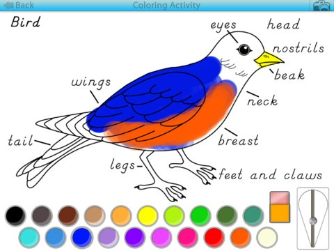 Montessori Coloring Activities for the iPad by Mobile Montessori.