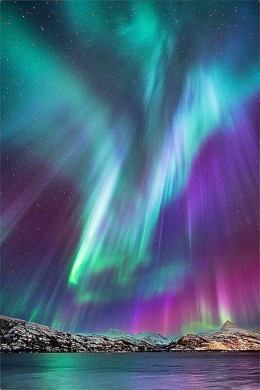Aurora boreales