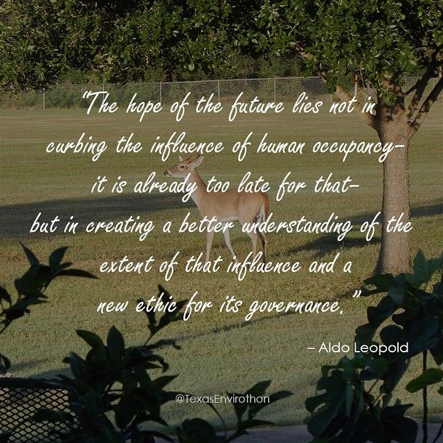 """The hope of the future lies not in curbing the influence of human occupancy--it is already too late for that--but in creating a better understanding of the extent of that influence and a new ethic for its governance."" --Aldo Leopold, Game Management"
