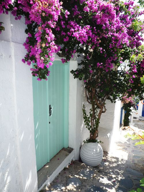 Lovely colours - Skopelos walkway