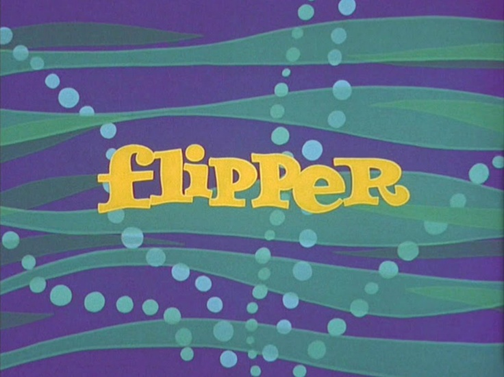 78 best images about tv flipper on pinterest preserve