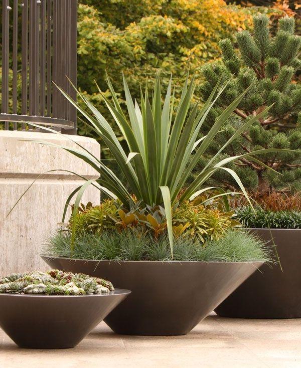 top 38 ideas about pflanzen und blumen on pinterest parks chairs and dekoration. Black Bedroom Furniture Sets. Home Design Ideas