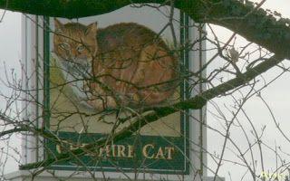 Cheshire Cat (Cheshire Kedisi). Bunun bir pub tabelası olduğunu sonra anlıyoruz.