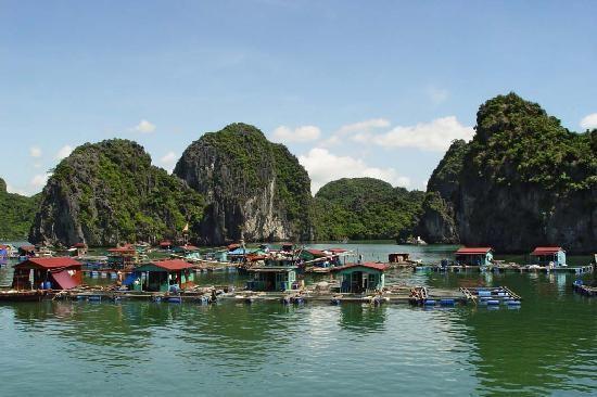 Fishing village in Cat Ba Island