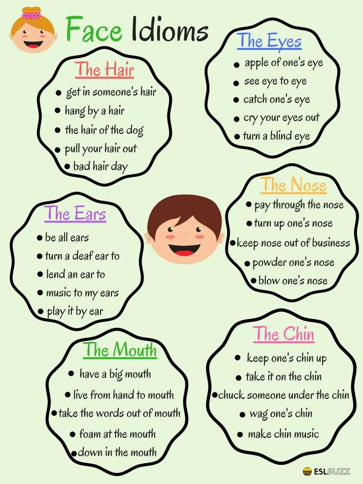The Face Idioms 2/2