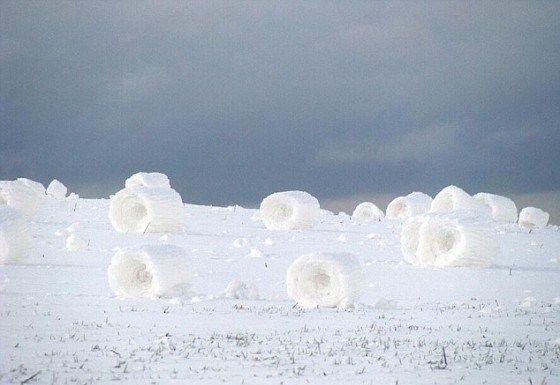 Ces cylindres sont formés lorsque le sol est glacé, de sorte que la neige ramassée par le vent ne colle pas, mais seulement sur elle-même, formant le «rouleau». Il y a des critères très précis pour que les rouleaux de neige se forment, c'est pourquoi ils sont très rares.