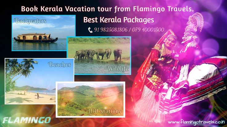 Favored with stunningly wonderful backwaters, peaceful palm-bordered flawless shorelines, green-covered moving slopes, brilliant picturesque magnificence and rich widely varied vegetation, Kerala is a standout amongst the most prevalent traveler destinations and excellent conditions of India.