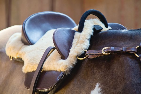 Bareback Saddle from The Australian Stock Saddle Company | The Trail Rider
