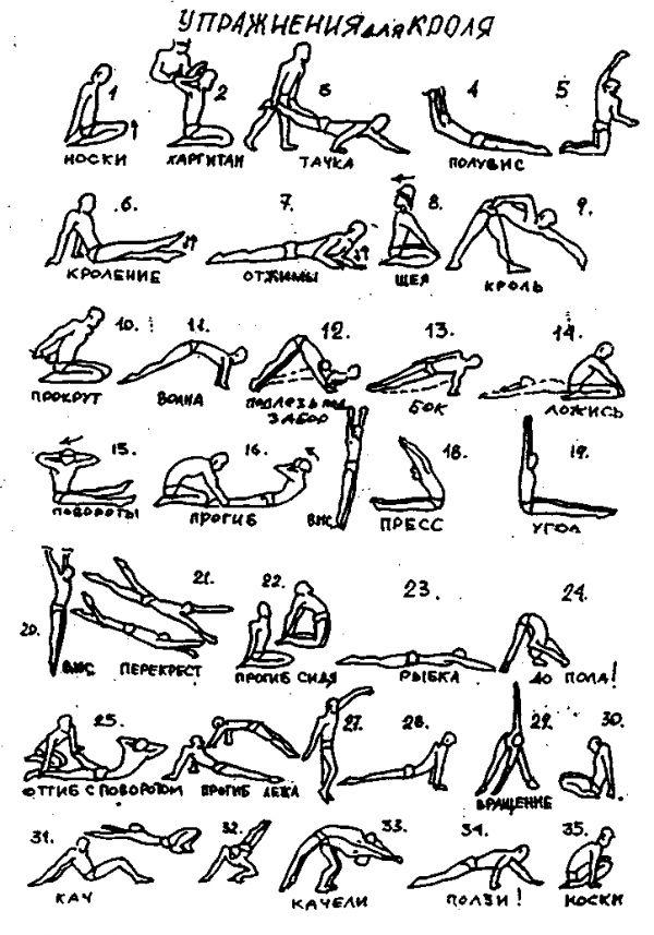 Упражнения офп с картинками