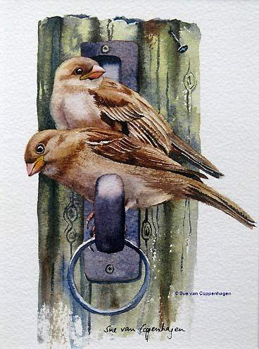 Sparrows Bird Painting by artist Sue van Coppenhagen