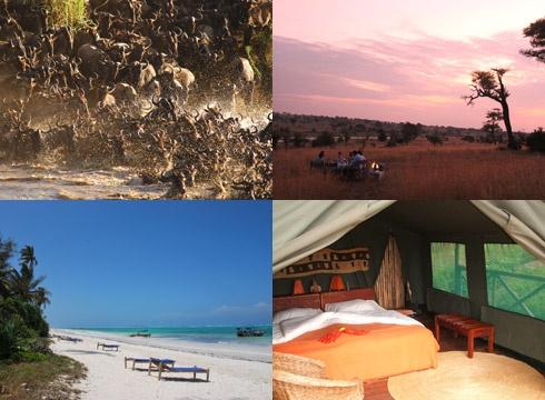 De big five en tropische stranden  Lake Manyara NP – Serengeti NP – Ngorongoro Krater – Zanzibar - 12 dgn