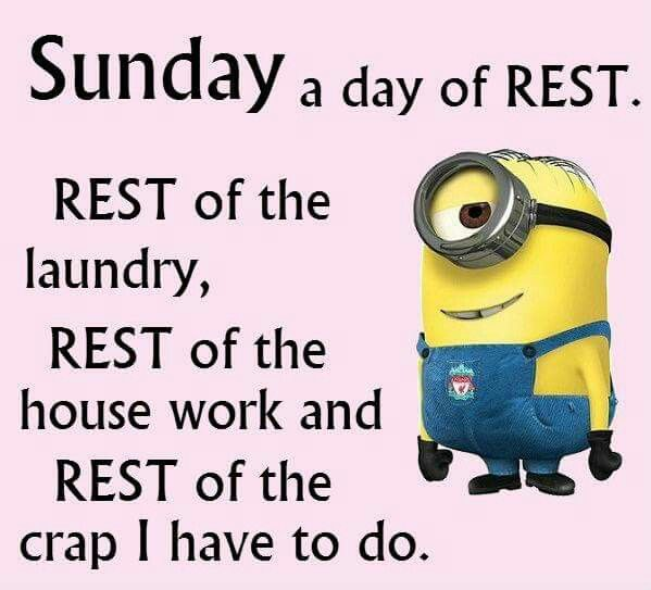 272 best Minions images on Pinterest | Funny minion, Minions ...
