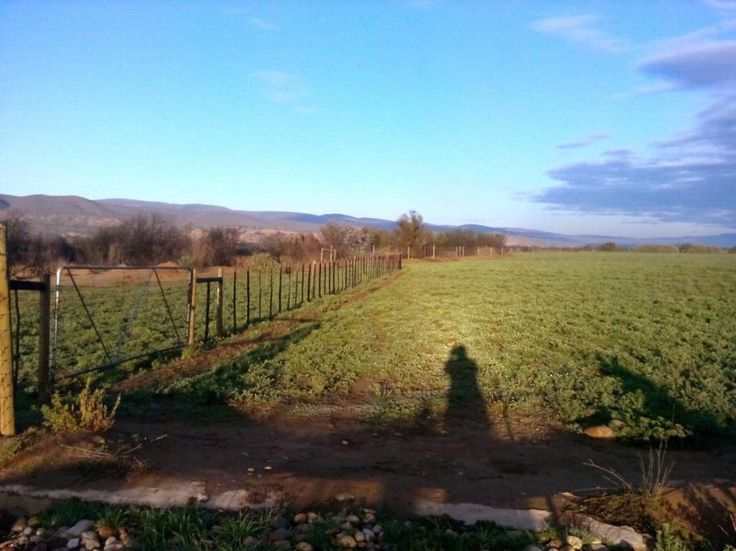 Farm for sale in Oudtshoorn